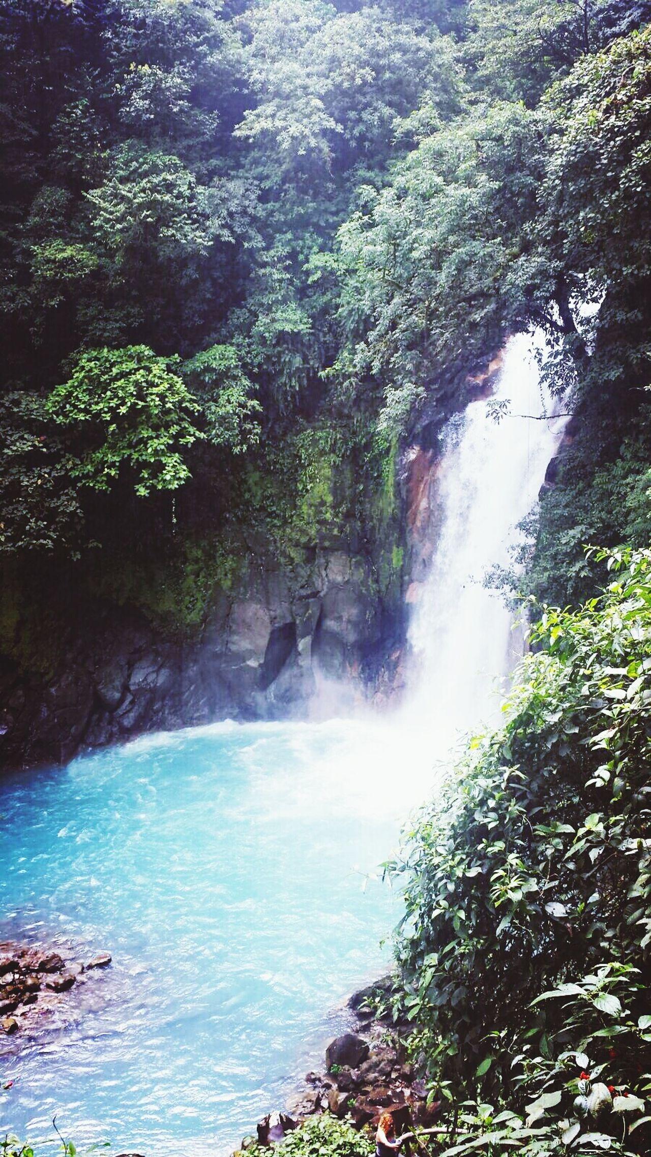 Water Waterfall Beauty In Nature Eco Tourism Costarica2016 Pura Vida ✌ Parque Nacional Volcan Tenorio Azul