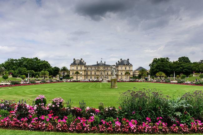 Cloud - Sky Flower Jardin Du Luxembourg Luxembourg Garden Paris Paris ❤ Paris, France  Sky Sky And Clouds