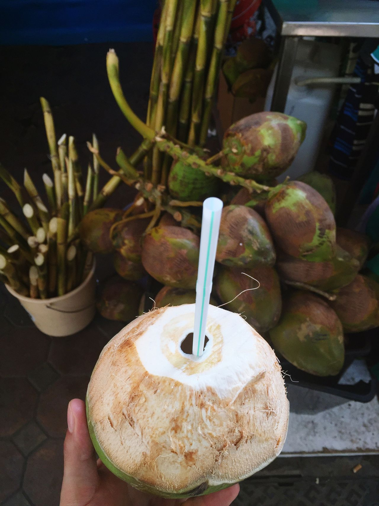 Drinking coconut Coconut Coconuts Coconutwater Straw Market Fleemarket Oldtown My Perspective Drinking FreshCoconut Fresh Coconut Fresh Coconut Juice