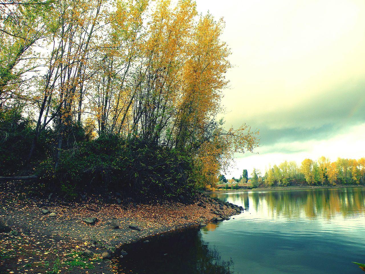 Oregon City Clackamette Park