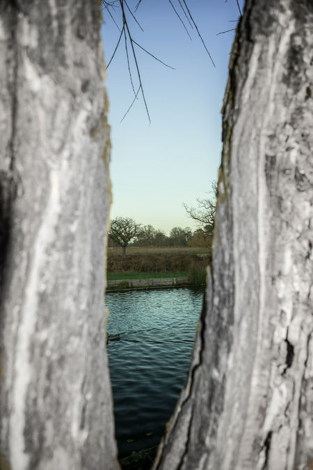 Beauty In Nature Close-up Darkness And Light Day Different Doitforfun Don'tdowhatothersdo Freshday Lake Life Through My Eyes Lostinthought Nature No People Outdoors Reflection Scenics Sky Tree Visforviewing Water