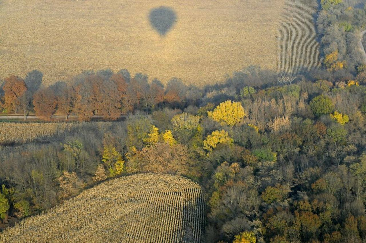 Autumn from above Hot Air Ballooning
