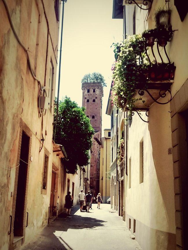 Tower Tuscany Traverl Walking Around Enjoying The Sun On The Road Travel