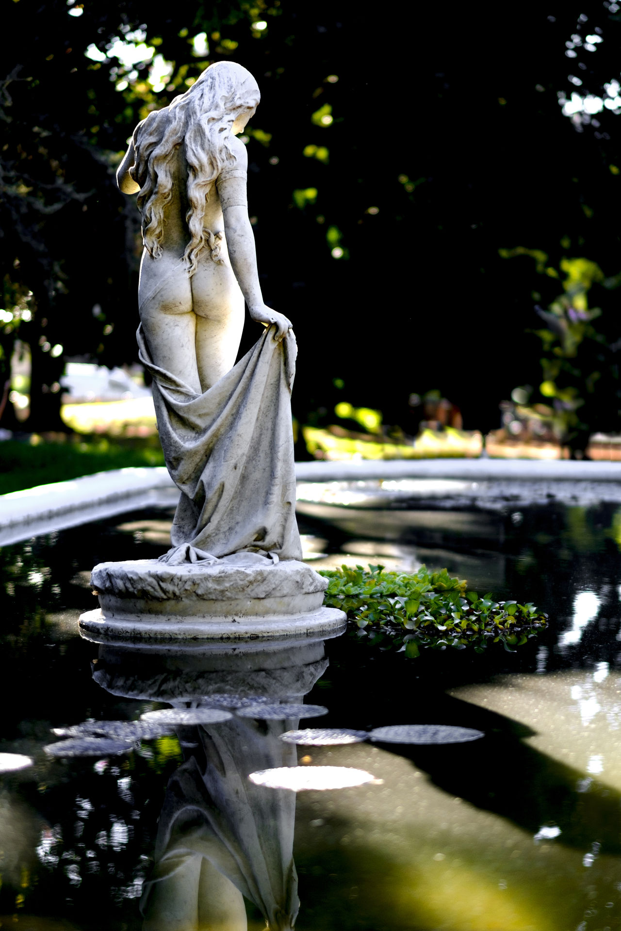 Beauty on the Fountain Back Backlight Beauty Belleza Calm Contraluz Curves Escultura Femininity Fountain Lights And Shadows Nature Outdoors Peaceful Sculpture Statue