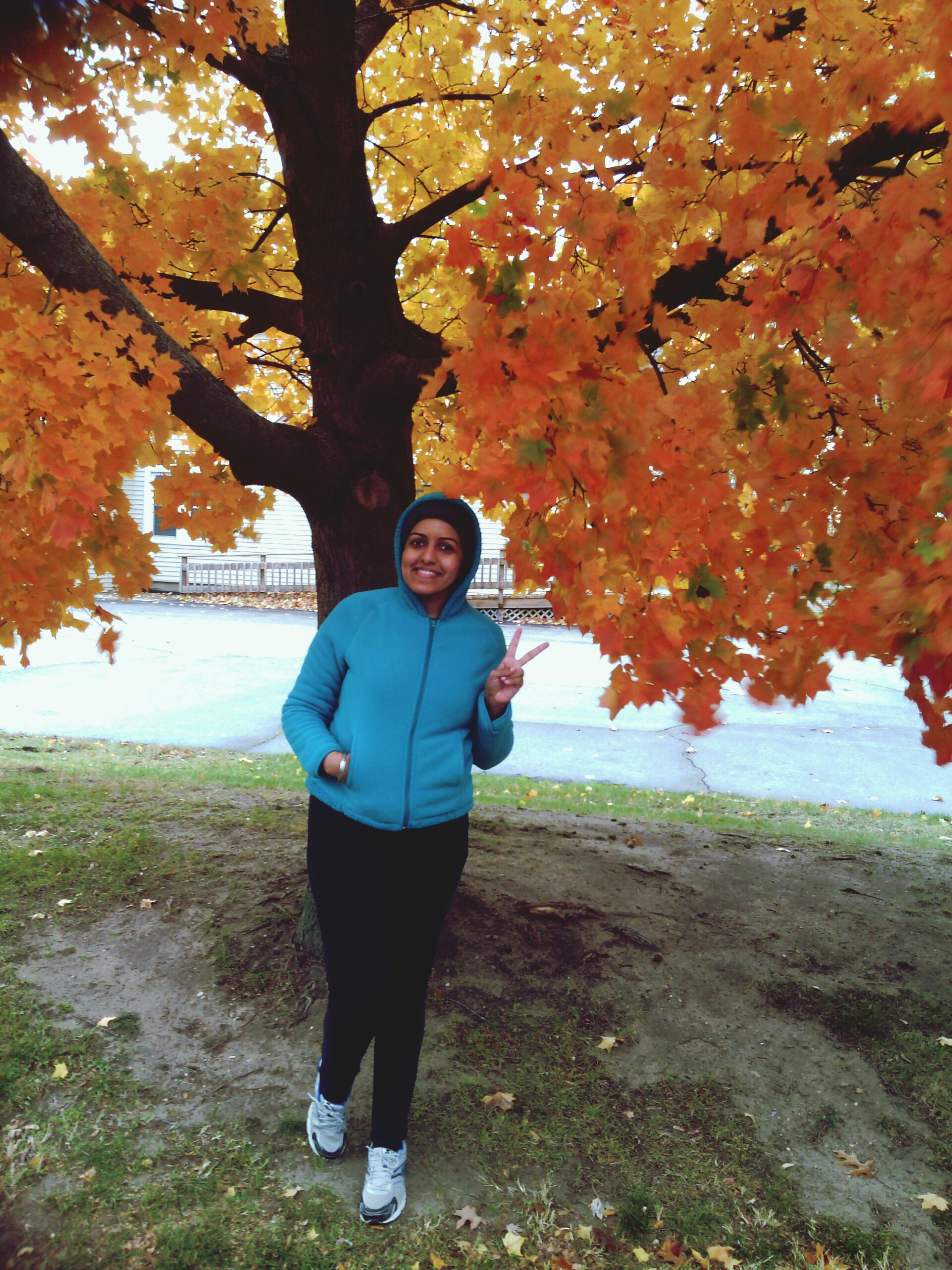lifestyles, tree, leisure activity, full length, autumn, standing, casual clothing, season, change, leaf, rear view, nature, walking, tree trunk, day, growth, outdoors, tranquility