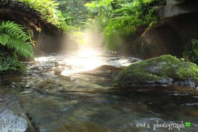 名水百選 Water 蒜山 Okayama