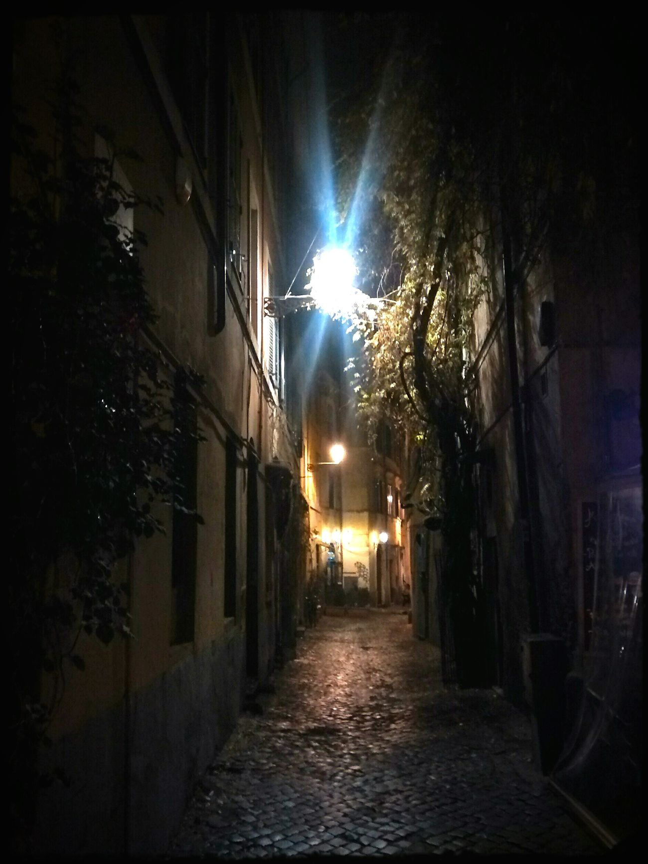 Trasteverebynight PreciousMoments Capodanno2016 Lovely Night! Roma Light And Shadow