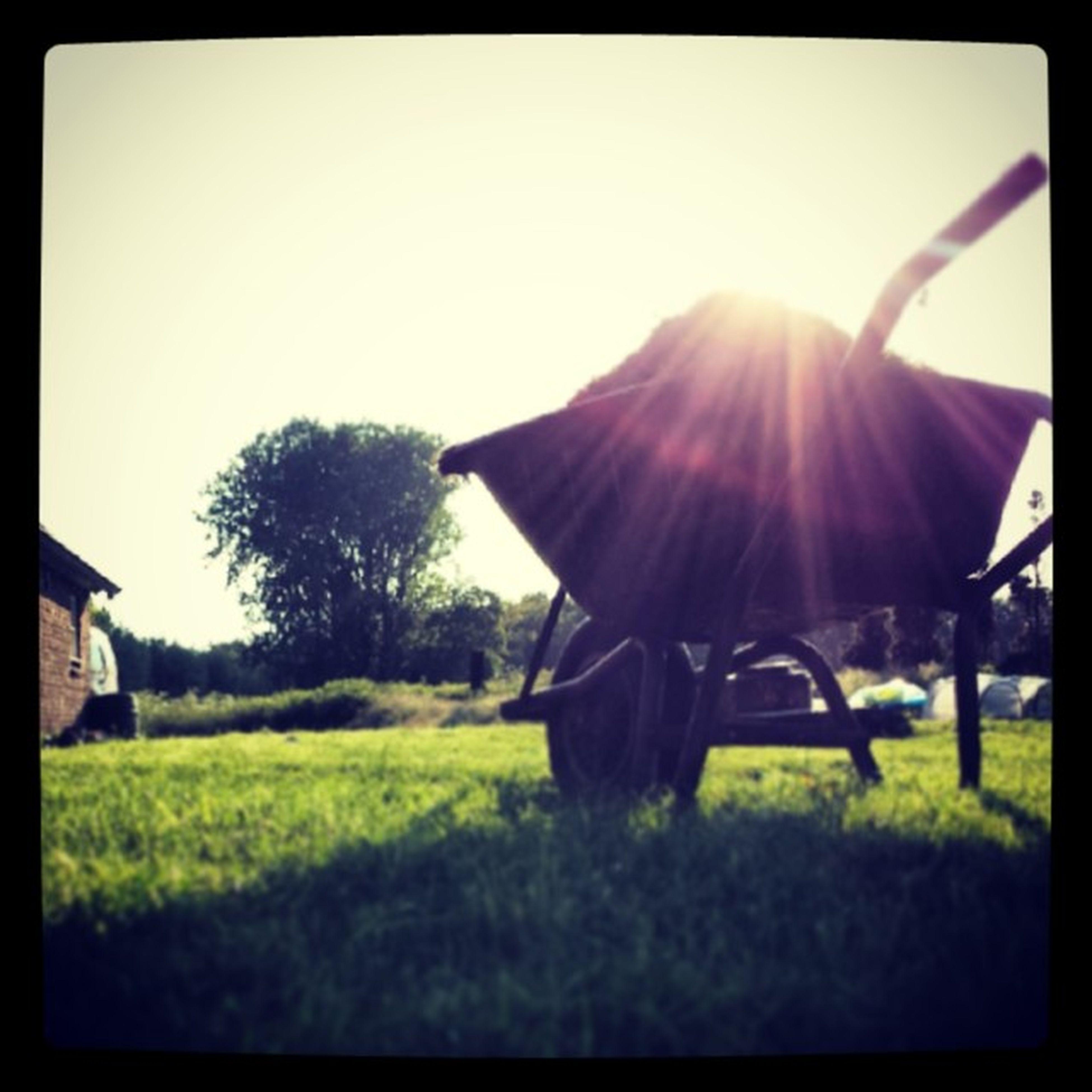De buren hadden een suikerkopje met daarop de tekst: Het gras bij de buren is altijd groener Klopt Eenboerklaagtaltijd