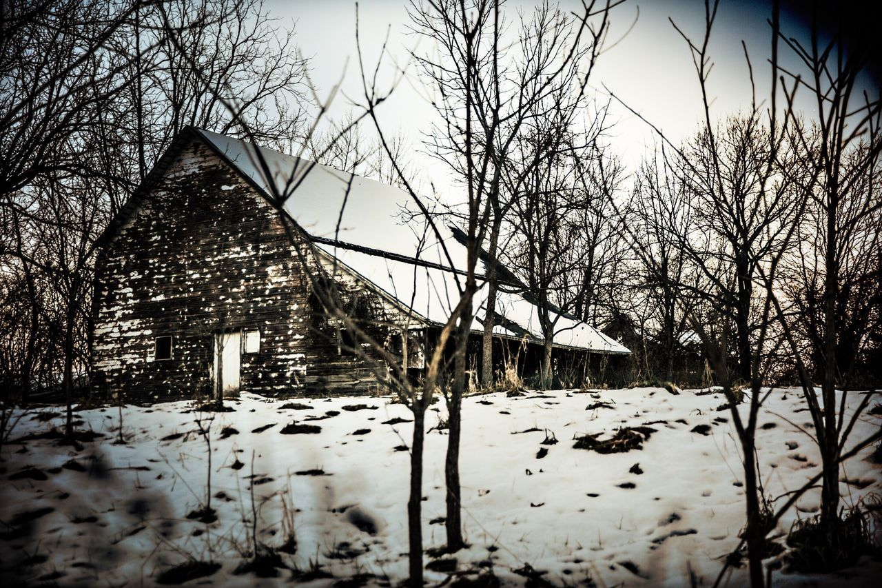 snow, cold temperature, winter, bare tree, weather, nature, built structure, outdoors, architecture, building exterior, tree, no people, frozen, beauty in nature, day, tranquility, branch, snowing, sky, bleak
