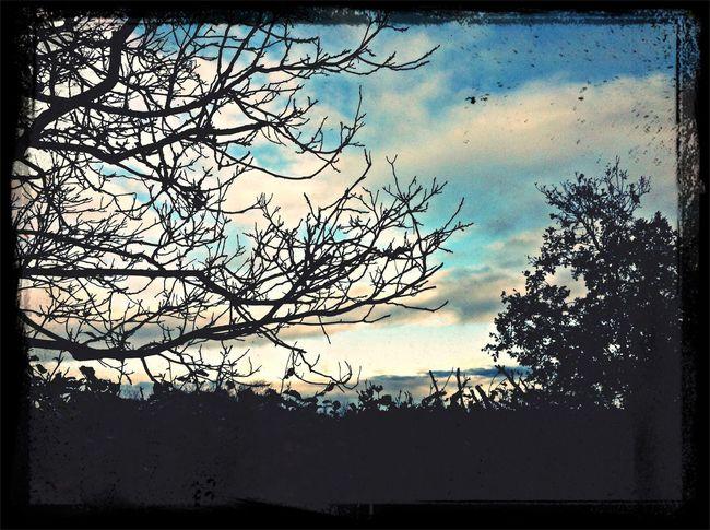 Winter??? Renkum Clouds Sky The World Around Me