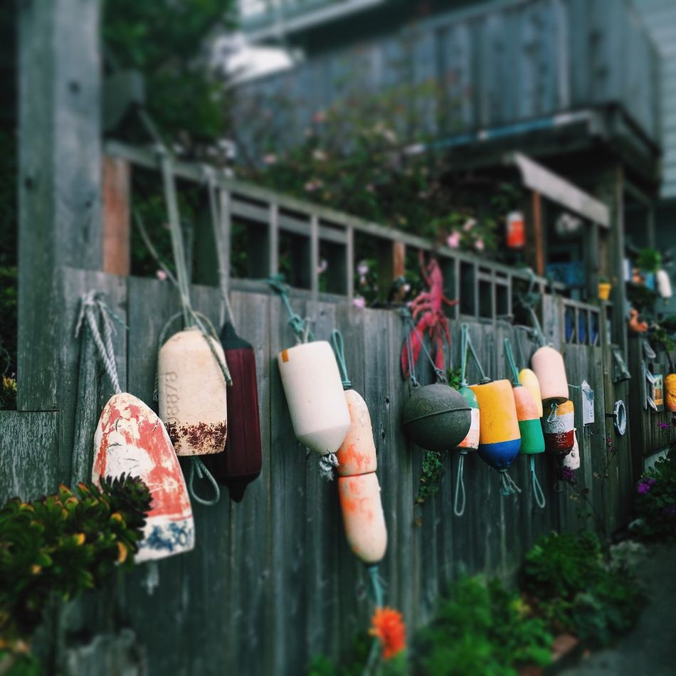 Beautiful stock photos of mond, Day, Equipment, Fence, Fishing