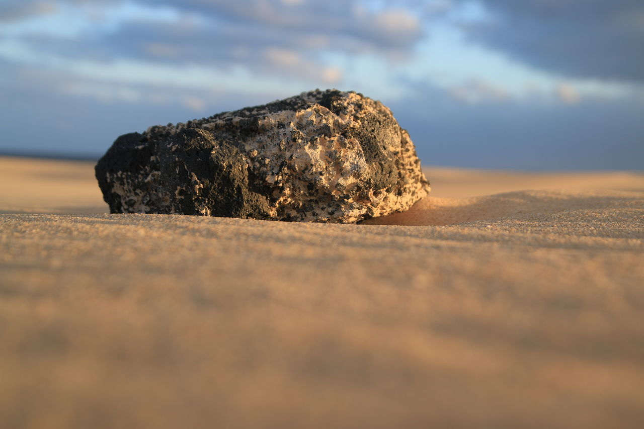 Beauty In Nature Close-up Golden Grains Of Sand Sand Stones Sunset Tranquility 43 Golden Moments