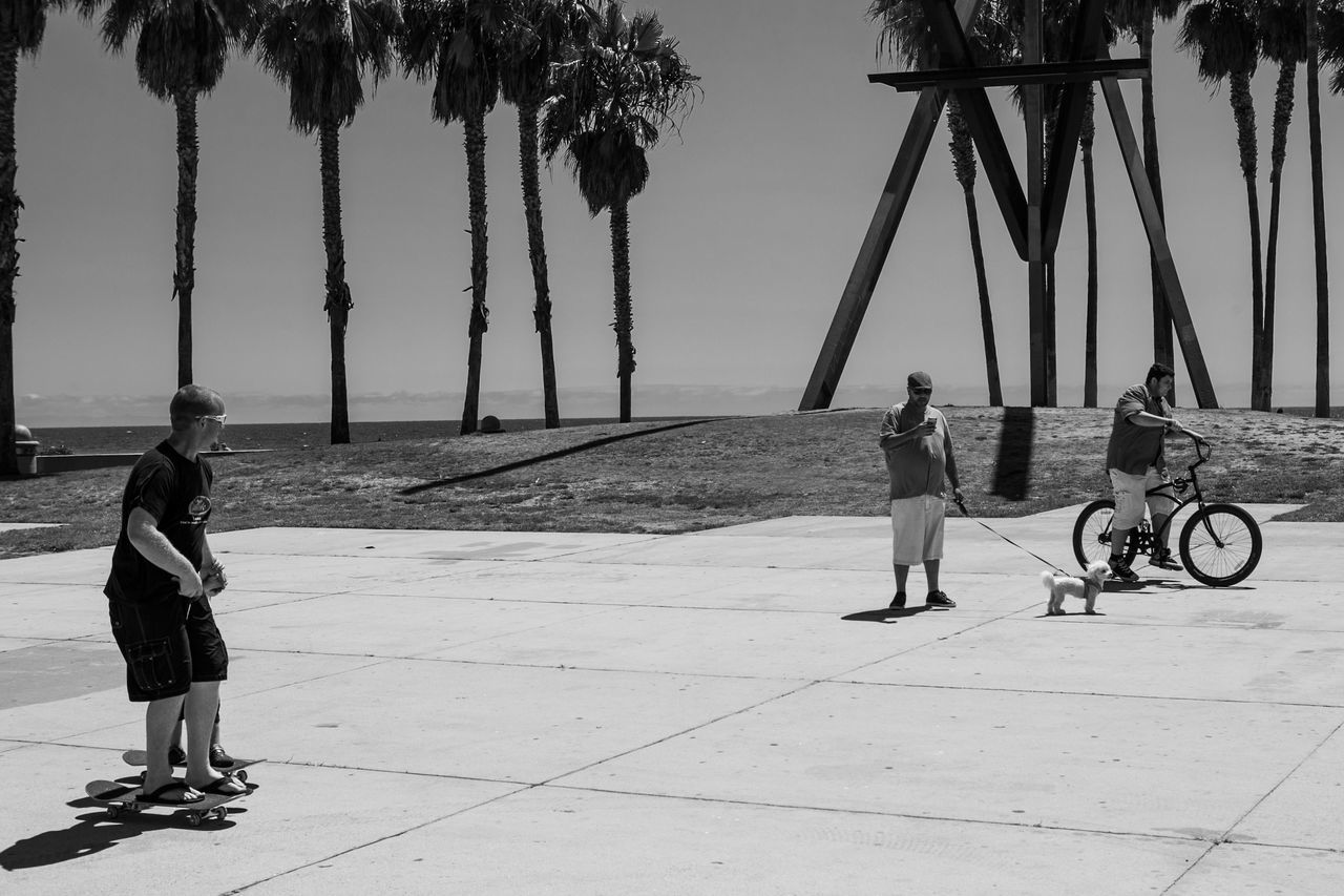 real people, bicycle, two people, lifestyles, full length, childhood, leisure activity, palm tree, tree, togetherness, outdoors, day, playing, boys, men, sky, people
