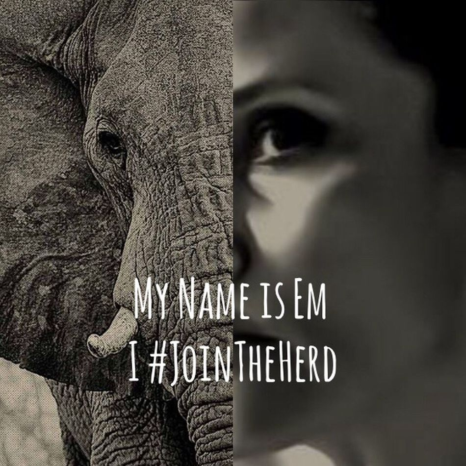 Please join us..🙏🏼 For My Friends That Connect Join The Herd https://yearoftheelephant.org/ Together We Can Do It! Nature_collection Save The Nature Save The World Save The Planet Save The Animals We Can Change The World Wildlife & Nature Fine Art Photography Telling Stories Differently Shootermag Showcase August 2016 Elephant Inspired By Nature