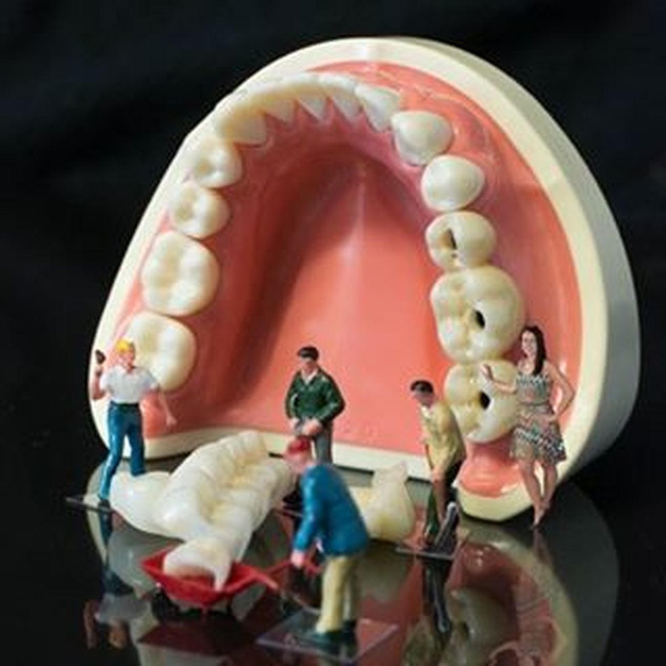 www.mcdowell-service.com Dental Dentistry Dentaltechnician Dentallab