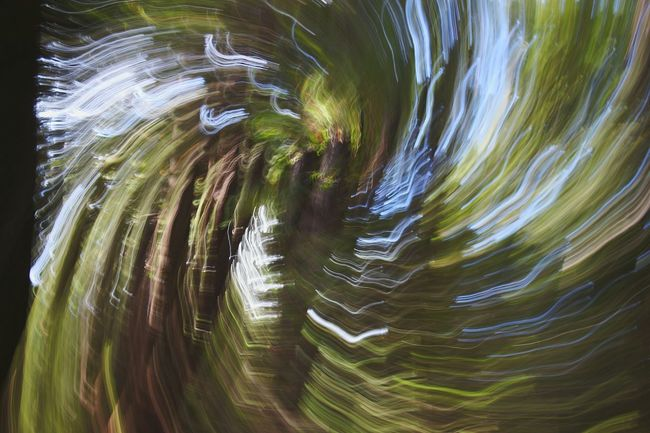 Boonville California Motion Long Exposure No People Speed Blurred Motion Concentric Backgrounds Abstract Nature Outdoors Beauty In Nature Horizontal Day