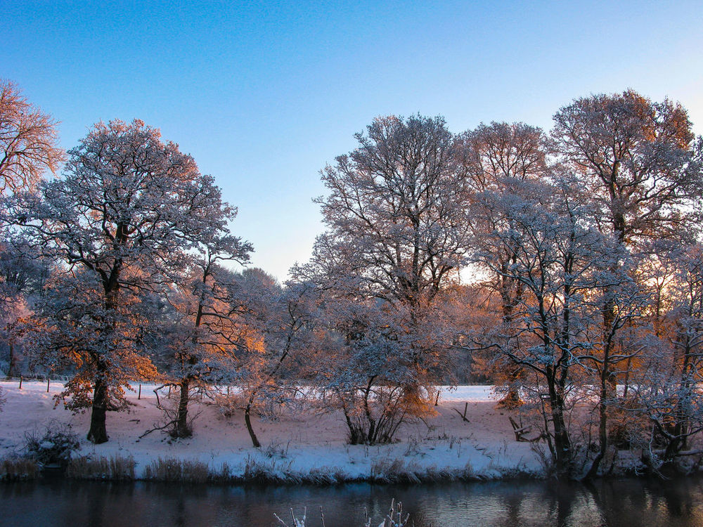River Earn Winter Bare Tree Beauty In Nature Branch Clear Sky Cold Temperature Day Growth Landscape Nature No People Outdoors Scenics Sky Snow Tranquil Scene Tranquility Tree Water Winter