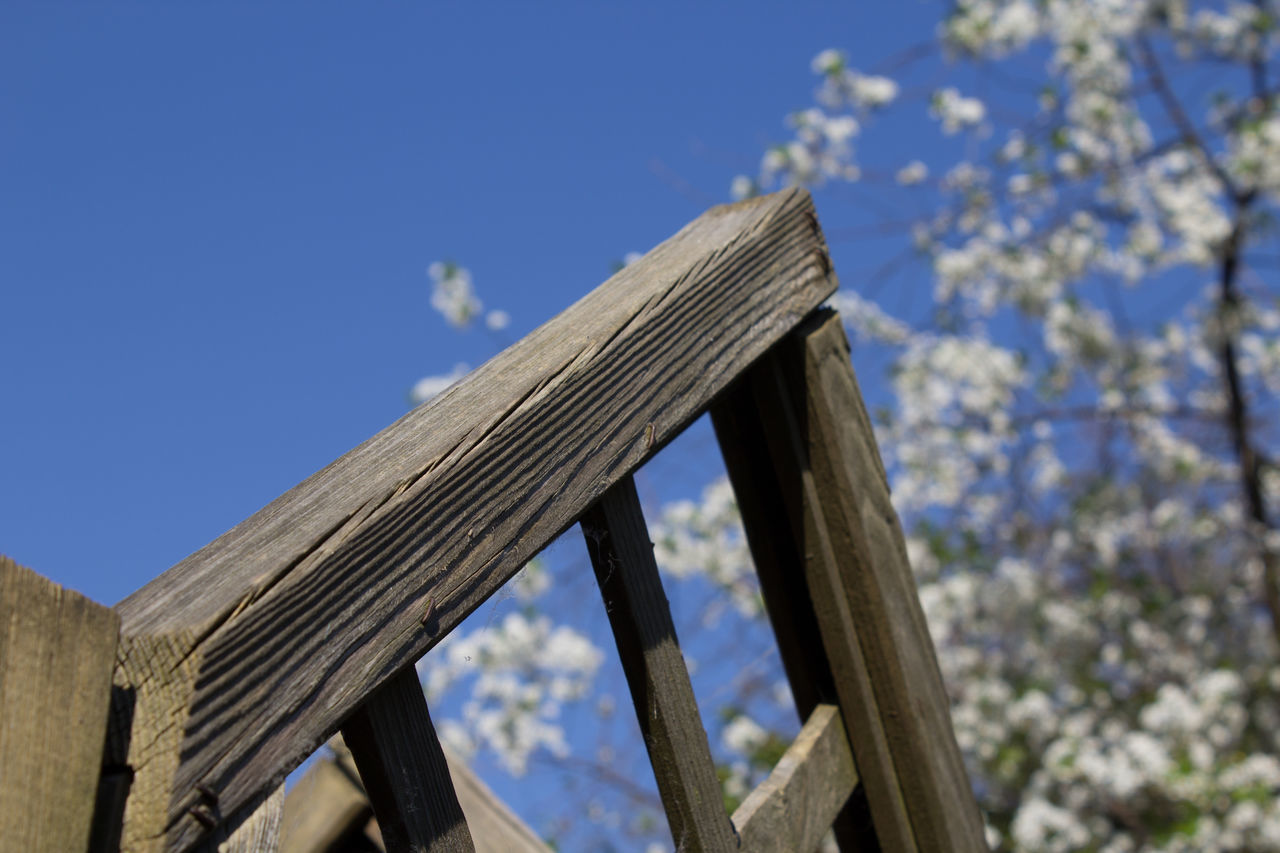 Blue Close-up Day Low Angle View Nature No People Outdoors Pergola Sky Wood - Material