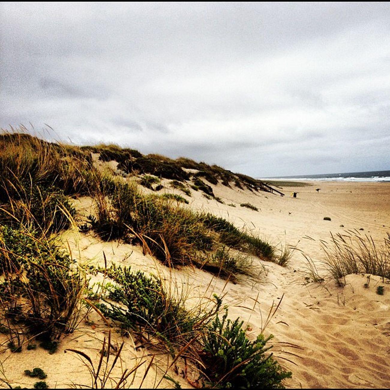 #cantanhede #tocha #portugal #instagood #instagram #photooftheday #beach #praia Tocha Cantanhede Beach Praia Portugal Photooftheday Instagram Instagood