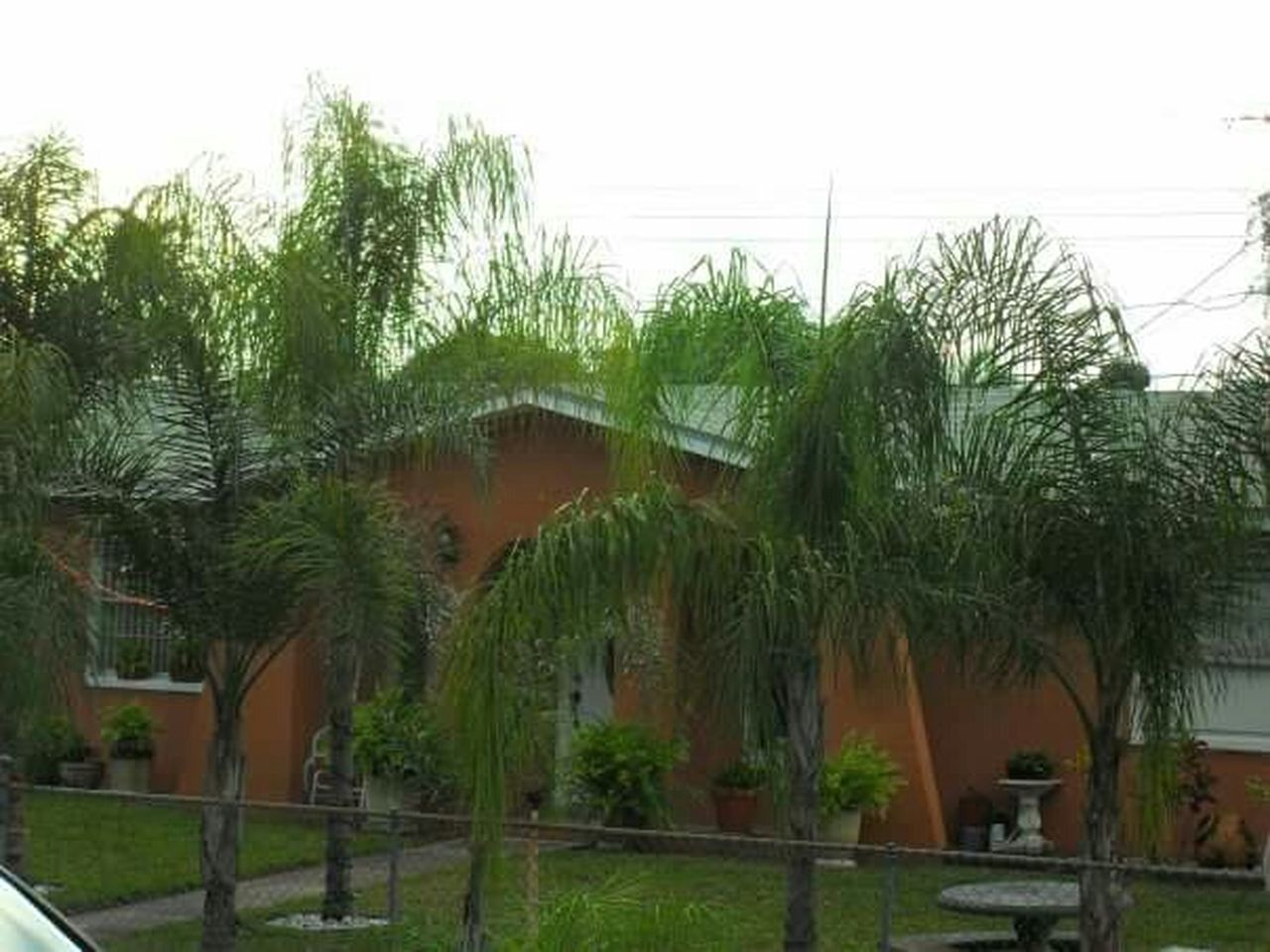 House Florida Palm Trees Orange Rustic Home Exterior House Entrance