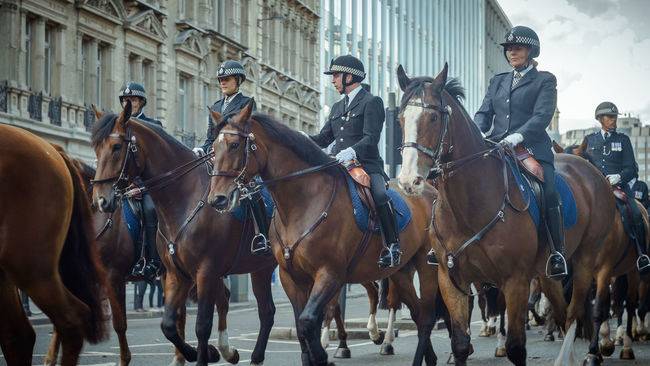 Formal Horses London Officers Outdoors Pageantry Parade Police Street Streetphotography TakeoverContrast The Culture Of The Holidays Uniform United Kingdom Sonyalpha SonyAlpha6000 Dramatic Angles Photography Themes TheCreatorClass Old-fashioned EyeEm Best Shots EyeEm Best Edits Eye4photography