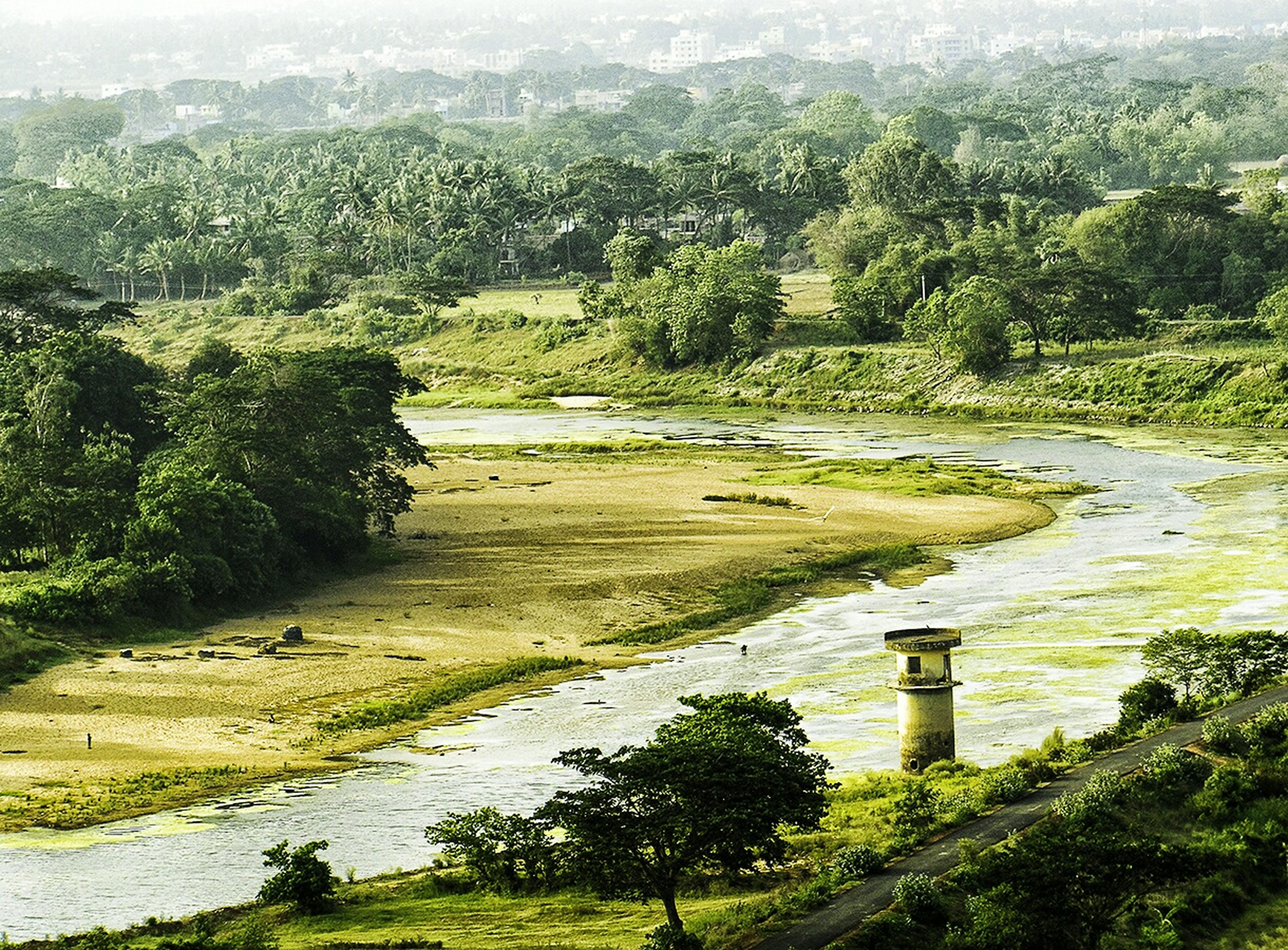 First Eyeem Photo Dhauli Bhubaneswar Lighthouse Daya River Landscape Green River Odisha Getting To Know Ashoka