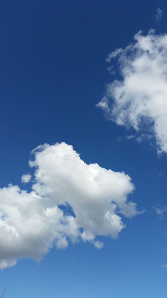 Sky Blue Sky Relaxing Moments Atmosphere Sky And Clouds Cloud Blue Bluesky Blue Sky And Clouds Free Freedom