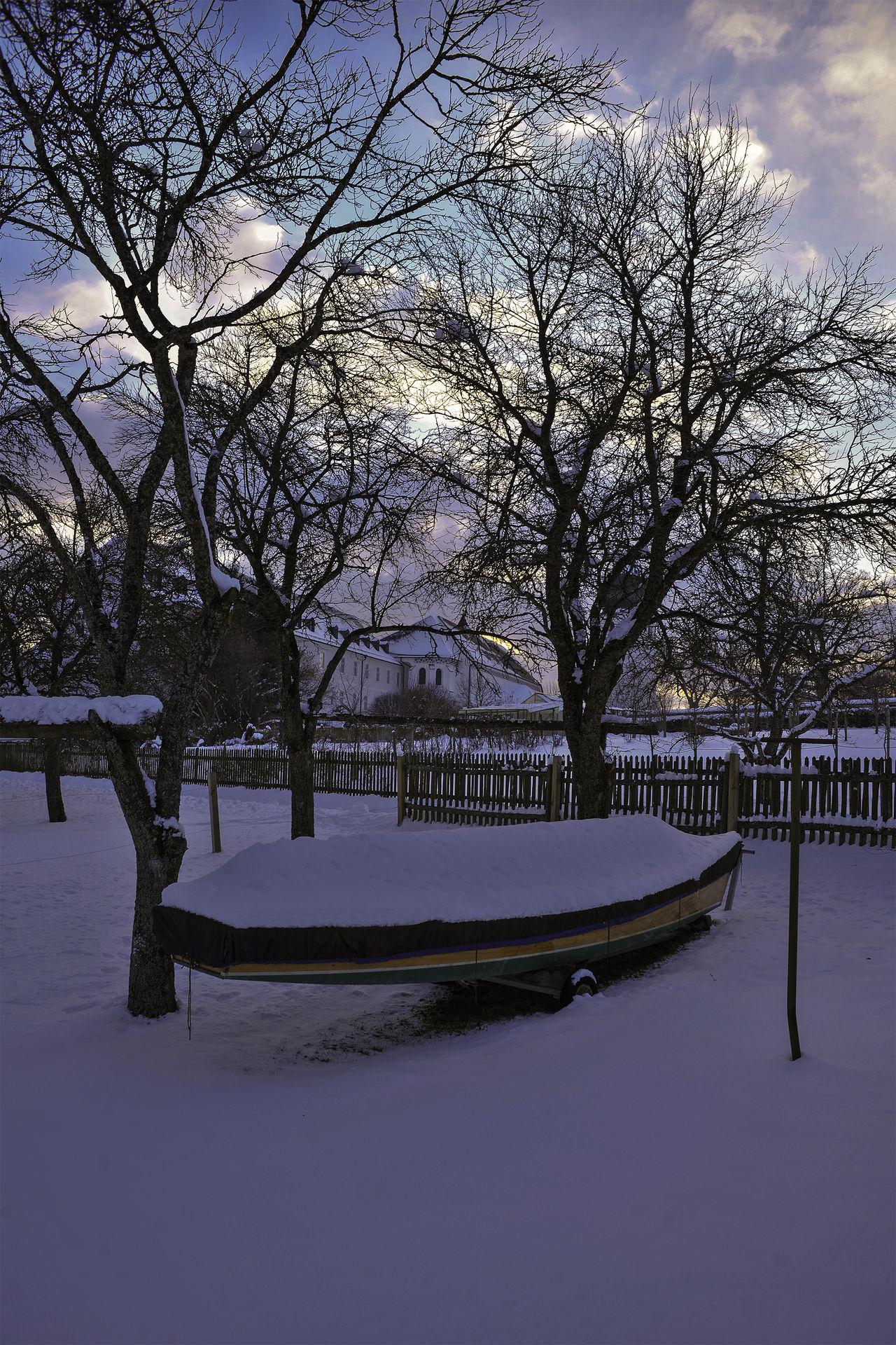 Boot Boot Fischerboot Nature No People Outdoors Snow Tree Winter