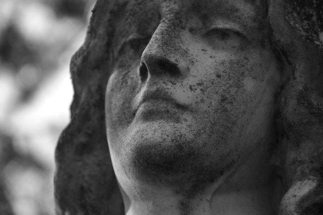 Statue Human Representation Close-up Sculpture Focus On Foreground Creativity Stone Material Human Face People And Places Bokeh Cemetery Graveyard Beauty Graveyard History No People Creativity Art And Craft Statue Monochrome Black And White Photography Black & White Blackandwhite Black And White Tranquil Scene Battle Of The Cities