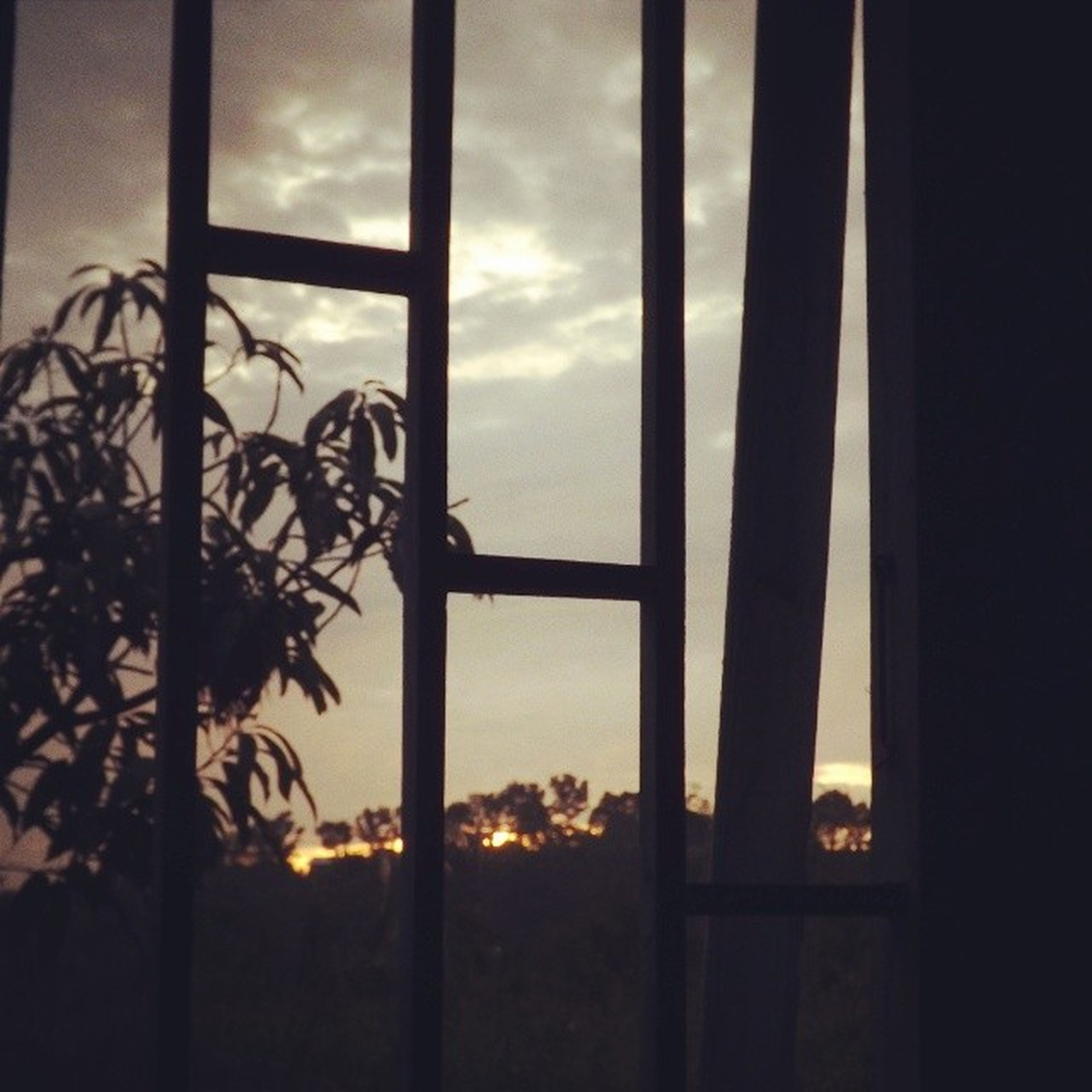silhouette, sky, sunset, low angle view, indoors, built structure, window, cloud - sky, architecture, metal, cloud, dark, no people, protection, safety, cloudy, dusk, security, sunlight