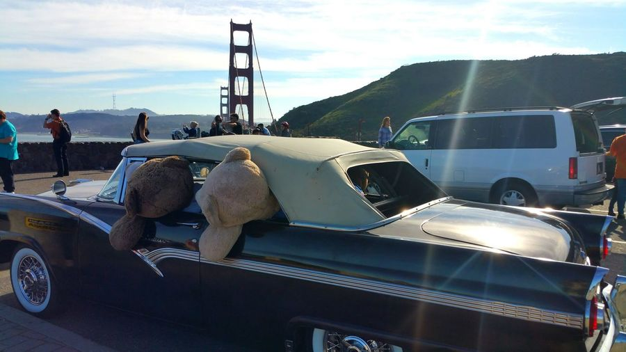 Cruzin' in a 1954 Ford Fairlane! Golden Gate Bridge Vista Scenic Overlook Ford Ford Fairlane Fairlane Antique Antique Car Old Black White Teddy Bears Spoof Fun Staged Distance Depth Copy Space EyeEm Selects Transportation Car Mode Of Transport Land Vehicle No People Day Outdoors