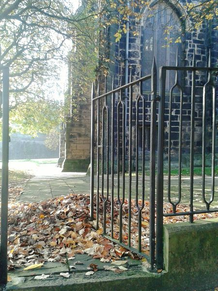 Churches Sunlight And Shadow Peaceful Place Autumn Leaves Gate Gateway Graveyard Collection Oldbuildings Graveyard Beauty Autumnbeauty
