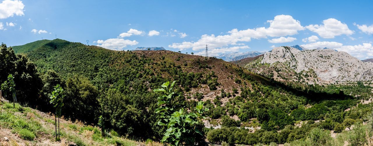 mountain, landscape, beauty in nature, nature, sky, scenics, tranquil scene, cloud - sky, tranquility, mountain range, day, no people, outdoors, tree
