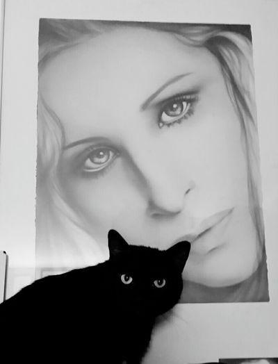 Tonight it will be freedom and Barbra daying good night Enjoying Life Black And White Cat Lovers Cats 🐱 Pet Photography