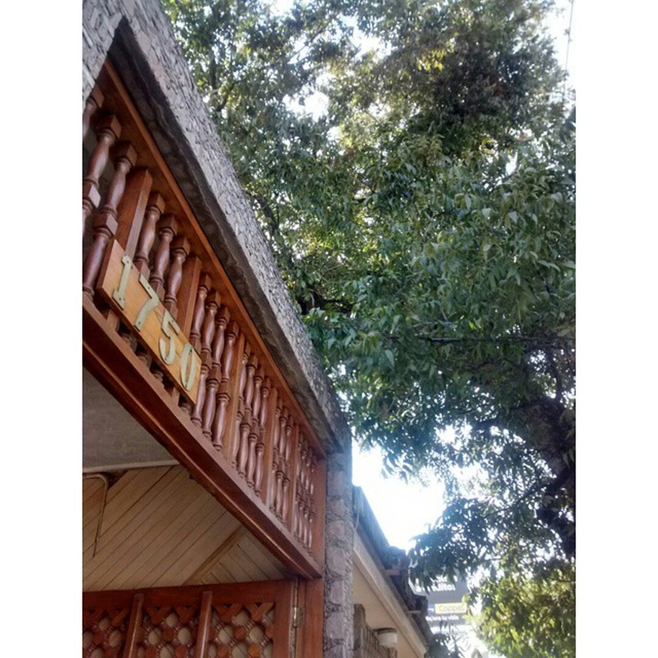 architecture, building exterior, tree, built structure, low angle view, day, no people, outdoors, nature, sky