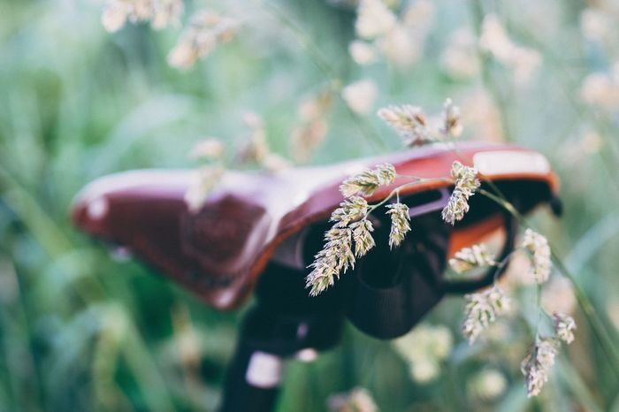 The Great Outdoors - 2015 EyeEm Awards EyeEm Best Shots Nature_collection EyeEm Nature Lover Sunshine Grass Bike On Your Bike Celebrate Your Ride