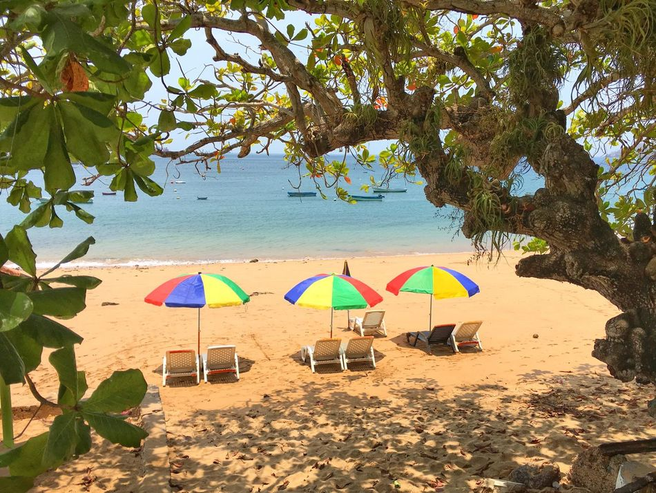 Isla Taboga Panama Island Umbrellas Beach Panamá