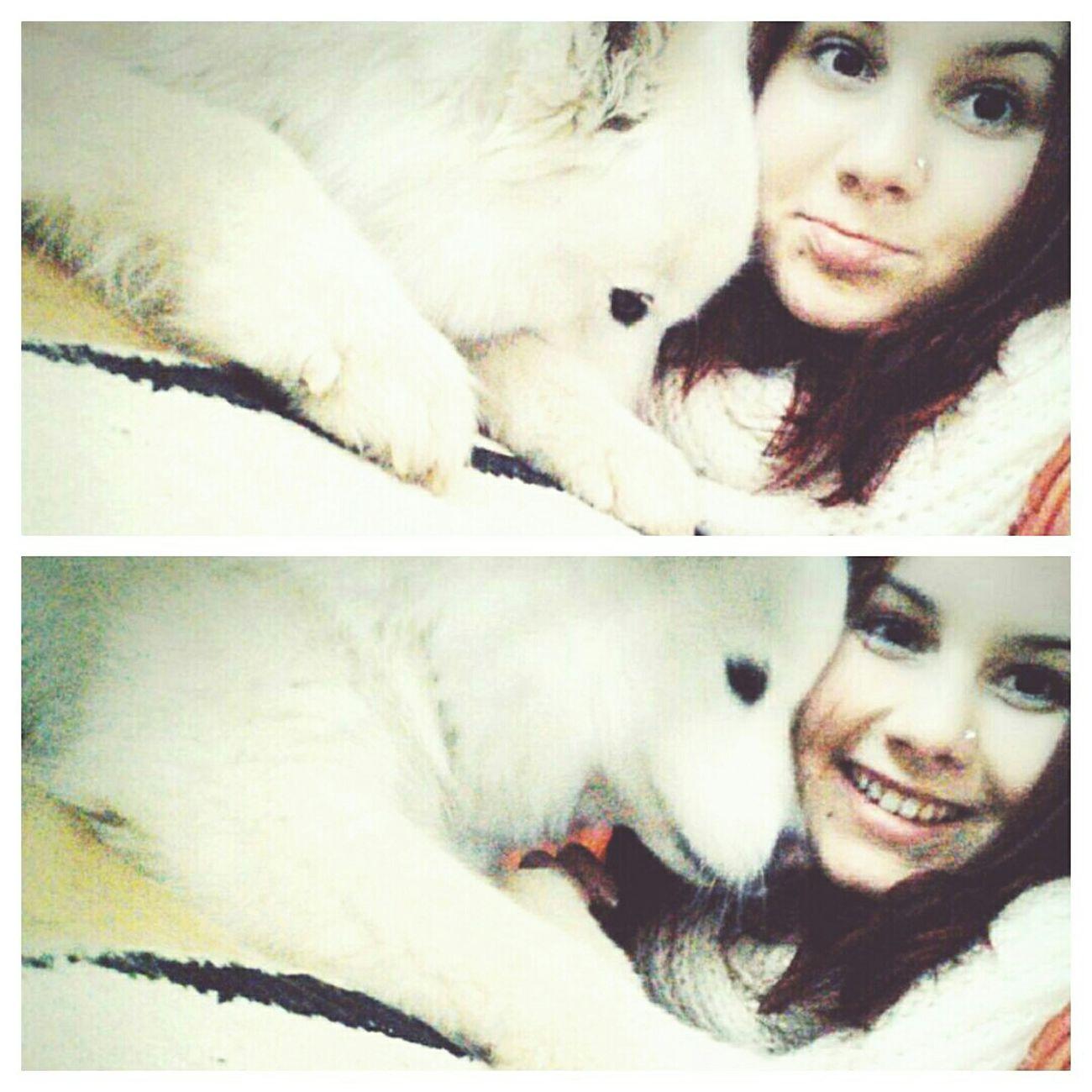 Dog Bestdogintheworld Selfiewithdog Love Bestfriend Cute