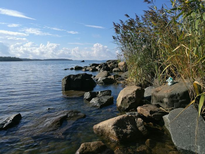 Blue elephant did some adventuring. Sea Water Scenics Outdoors Nature Beach Travel Destinations Sky Day Tree Horizon Over Water No People Beauty In Nature Nice Day Blue Blue Sky Plushie