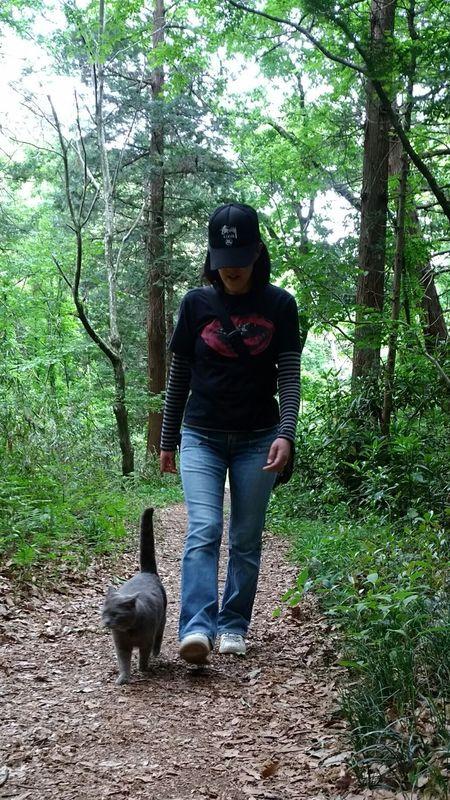 散歩 Love Cat ♥ Cat 野良猫 自由猫 野良猫