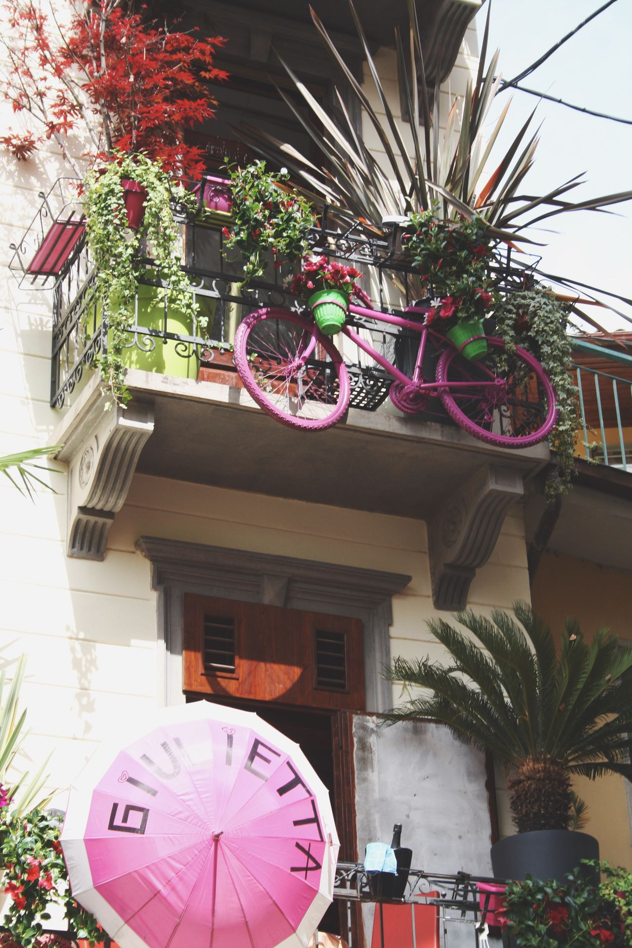 Building Exterior Villa Built Structure Architecture Low Angle View Plant Flower Lantern Tree Balkony Umbrella Bicycle Pink Magenta Colors Living Italy Fancy Sunlight Special Urban Nature Day Sommergefühle EyeEm Selects Let's Go. Together.