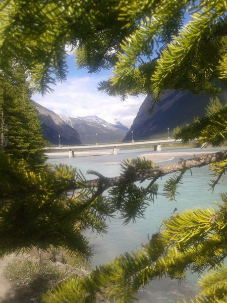 BC, Canada Beauty Beauty In Nature British Columbia Canada Photos Cruise Liner Day Landscape Mountain Mountains And Sky Nature No People Outdoors Reflection Rockies Sand Scenic Landscapes Scenics Sea Sky Travel Travel Destinations Tree Vacations Water