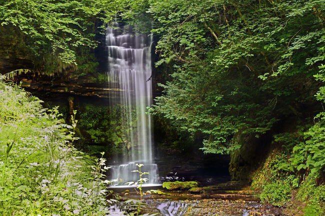 Glencar Waterfall, Co. Leitrim Beauty In Nature Co. Leitrim Day Flowing Flowing Water Forest Glencar Waterfall Grass Green Green Color Growth Idyllic Lush Foliage Motion Nature No People Outdoors Plant Scenics Hidden Gems  Tranquil Scene Tranquility Tree Water Waterfall