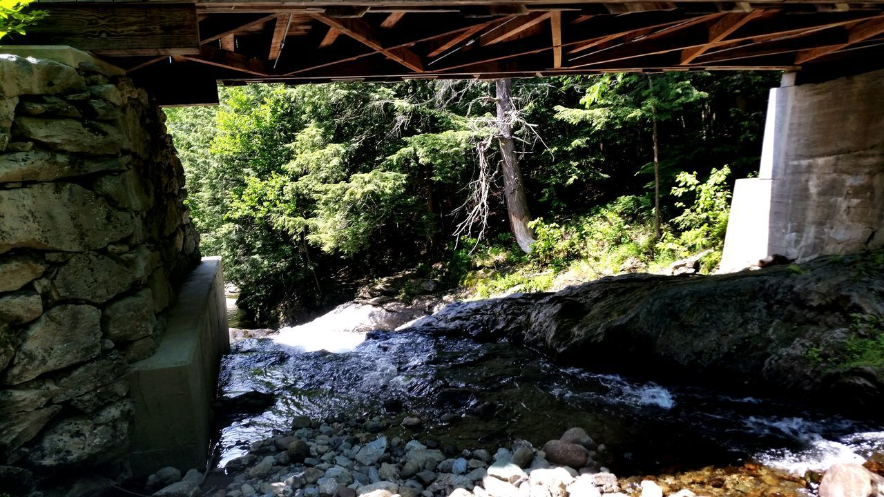rock - object, bridge - man made structure, built structure, architecture, no people, waterfall, day, water, outdoors, plant, tree, nature, river, beauty in nature, forest
