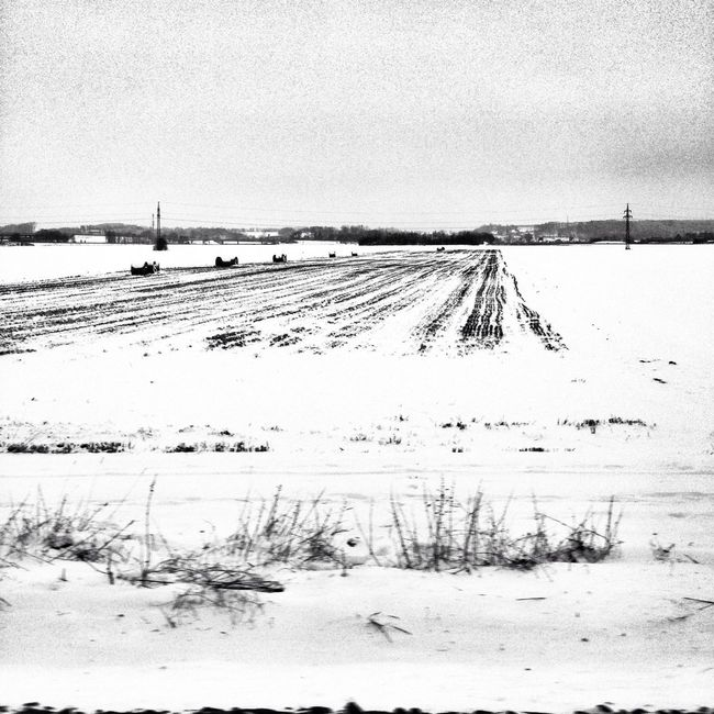 More fields of white #snow #white #blackwhite #blackandwhite #travel #germany #winter #railtravel #onthemove