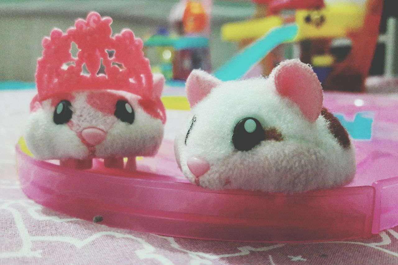 Mansão Hamster Animal Representation princesa hamster Toy Close-up Focus On Foreground No People Stuffed Toy Indoors  Day First Eyeem Photo