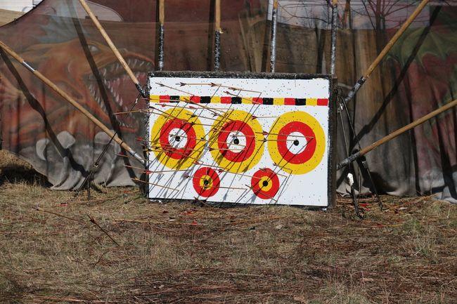 Zielscheibe Pfleil Pfleile Bogen Bogenschießen Arrow Arrows Target Target Shooting Archery Sport Sports Sports Photography