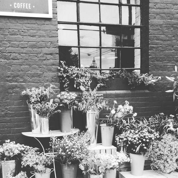 B&w Street Photography London Coffee Flowers Coffeshop