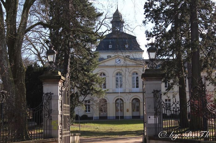 Eller Schlosspark Castle Tree Architecture Built Structure Religion Building Exterior Place Of Worship Spirituality No People Day Sky Outdoors Bare Tree Nature