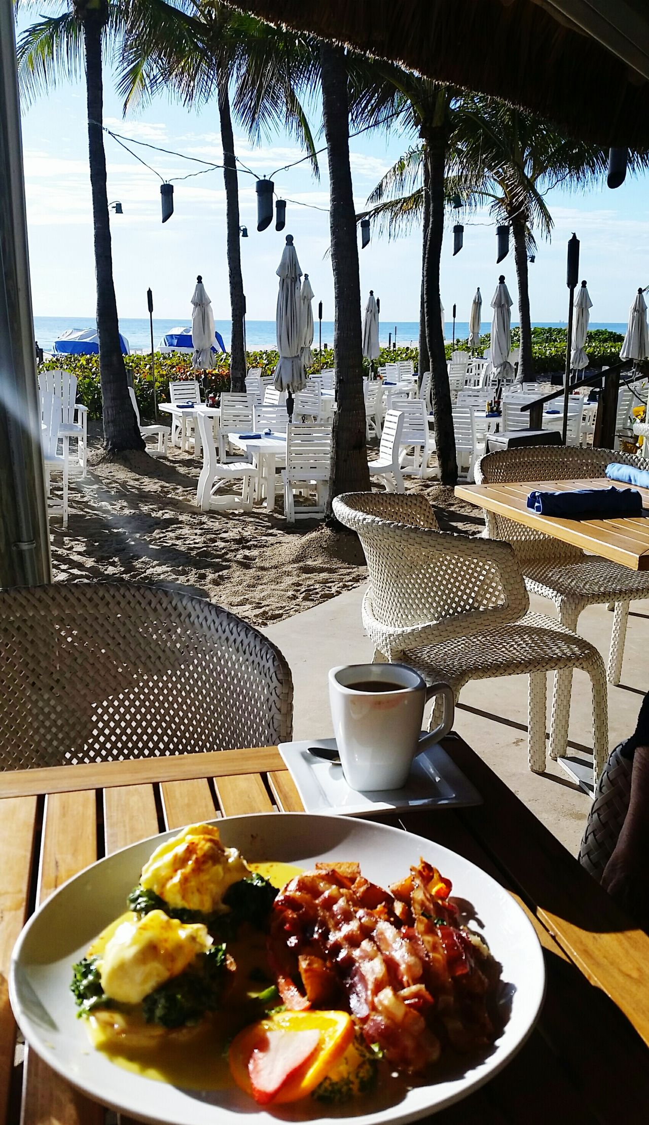 Table No People Vacations Food And Drink Tree Water Plate Drink Day Beach Outdoors Oceanside Breakfast Al Fresco Eggs Benedict